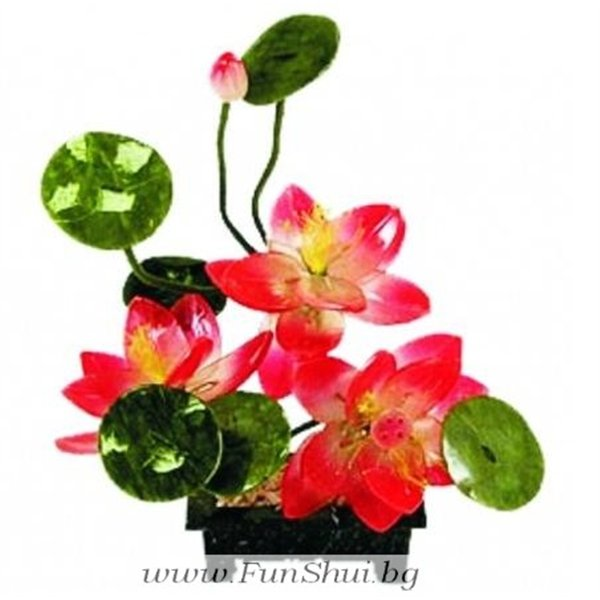Chinese lotus flower painting feng shui